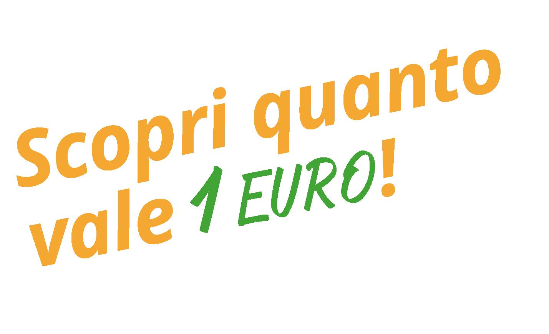 Scopri quanto vale 1 Euro!