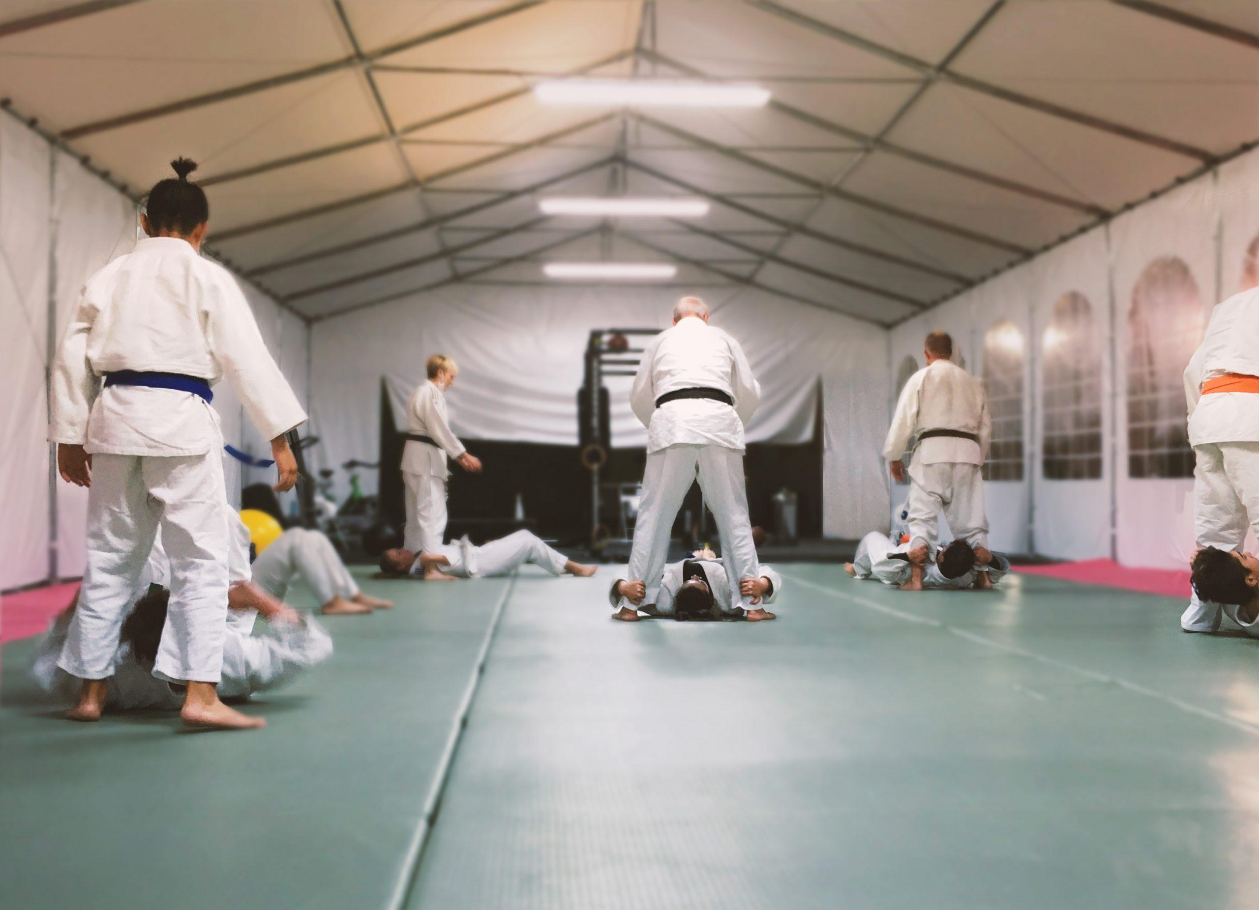 Judo serendip